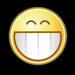 face, grin icon