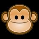 monkey, face