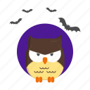 bird, fear, halloween, night, owl icon
