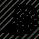 animal, mollusc, reptile, snail, snail shell icon
