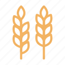 crop, food, grain, oats, wheat
