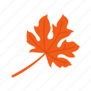 fall, harvest, leaf, maple leaf icon