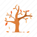 cold water, fall, harvest, tree icon