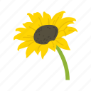 fall flower, flower, holiday flower, sunflower icon