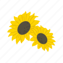 fall flower, flower, holiday flowers, sunflower icon