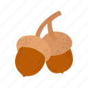 acorn, acorns, nuts, oak nut icon