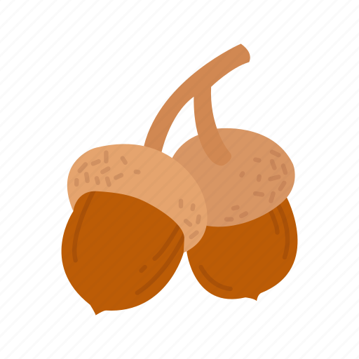 acorn, acorns, nuts, oak nut icon