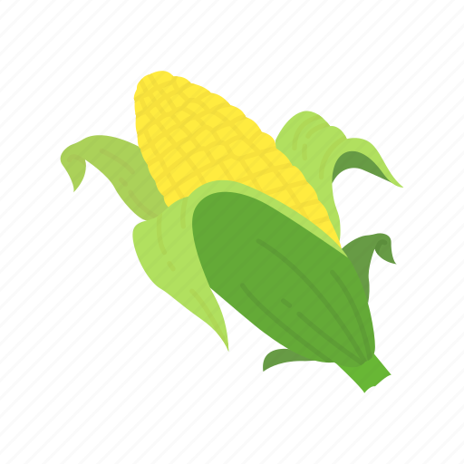 corn, corn husk, corn on the cob, thanksgiving icon