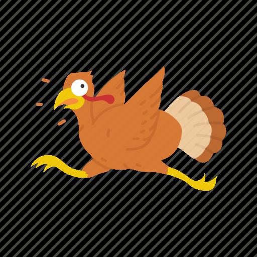bird, thanksgiving, turkey, wild turkey icon