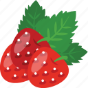 fresh strawberry, healthy food, porous fruit, red berries, strawberry