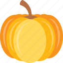 cucurbita, fruit, healthy, pulpy fruit, pumpkin