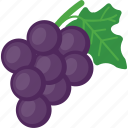 fruit, healthy fruit, plum, prune fruit, purple fruit icon