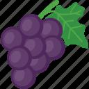 fruit, healthy fruit, plum, prune fruit, purple fruit