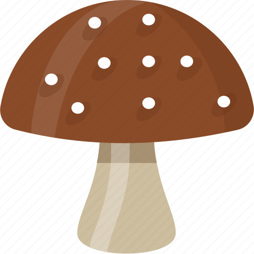 Fungi, fungus, mushroom, shiitake mushroom, toadstool icon - Download on Iconfinder
