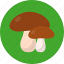 harvesting, holiday, mushroom, thanksgiving, vegetable icon