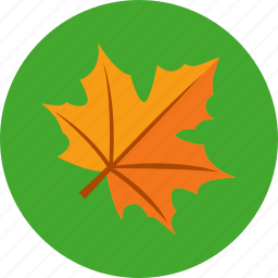 autumn, holiday, leaves, thanksgiving icon