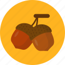 autumn, chestnut, grain, holiday, thanksgiving icon