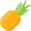 ananas, ananas comosus, organic food, pineapple, tropical fruit icon