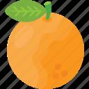 acidic, citrus fruit, fresh orange, fruit, pulpy fruit icon