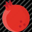 juicy fruit, pomegranate, pomegranate development, pomegranate seeds, seedy fruit icon
