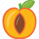 half of peach, juicy fruit, peach, prune fruit, pulpy fruit icon