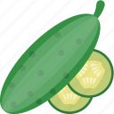 cucumber, cucumis sativus, food, healthy diet, vegetable icon