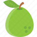 fermented pear, pear, pear cider, pear juice, ripen pear icon