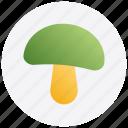 autumn, food, mushroom, thanksgiving, vegetable