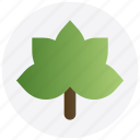 autumn, dry, leaf, leave, thanksgiving icon