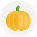 autumn, food, pumpkin, thanksgiving, vegetable