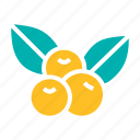 cherry, cherries, thanksgiving, fruit icon