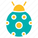 autumn, beetle, bug, insect, lady, pest icon