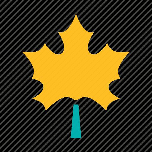 autumn, dry, leaf, leaves, maple, tree icon