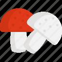 food, mushroom, restaurant, thanksgiving