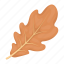 holiday, leaf, day, thanksgiving, autumn, oak
