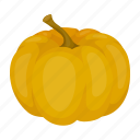 holiday, gourd, day, pumpkin, thanksgiving, vegetable