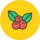 cherries, cherry, fruit, thanksgiving icon