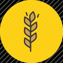 autumn, gluten, grain, harvest, millet, thanksgiving, wheat icon