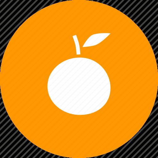 fruit, orange, thanksgiving icon