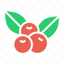 cherries, cherry, fruit, thanksgiving