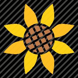 autumn, flower, sunflower, thanksgiving icon