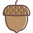 acorn, autumn, beech, oak, seed, tree icon