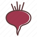 autumn, beet, food, root, thanksgiving, vegetable icon
