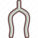 bone, superstition, thanksgiving, tradition, turkey, wishbone icon