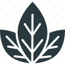 cannabis, hemp, leaf, marijuana icon