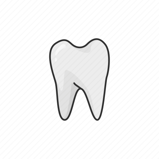 dentistry, denture, false teeth, teeth, tooth icon
