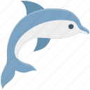 fish, fish playing, sea, sea animal, wheel fish icon