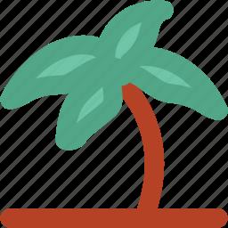 beach, coconut tree, date tree, island, palm, palm tree icon