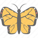 butterfly, fly, insect, monarch butterfly, spring icon