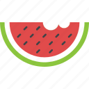 healthy diet, nutritious food, summer fruit, watermelon, watermelon slice icon